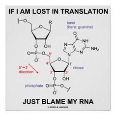 """Wry scientific biochemical humor comes alive with this poster featuring the messenger RNA molecule, along with the tongue-in-cheek saying: """"If I Am Lost In Translation Just Blame My RNA"""".  Make others do a double-take regarding what happens at the molecular level with this poster!"""