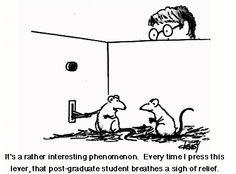 Experiments #Psychology