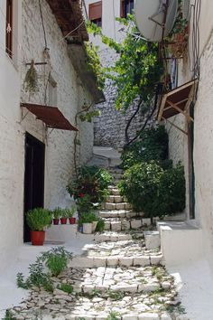 Berat, Albania , from Iryna