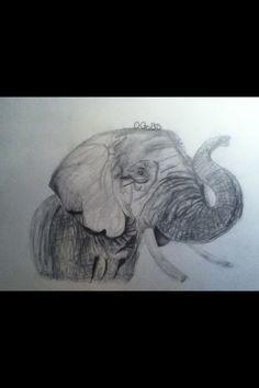 Olifant tekening