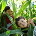 children & nature movement. Richard Louv. The connection between children and nature has never been more important than today.