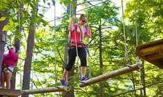 Aerial Treetop Adventure Course - Gunstock Mountain Resort | Groupon