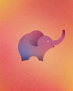 Dorota Pankowska elefante 13 circulos