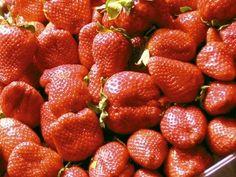 Cultivar fresas | Cuidar de tus plantas es facilisimo.com