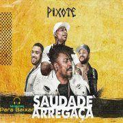 DOWNLOAD DE PIXOTE MUSICA GRATUITO BRILHO CRISTAL