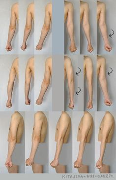 fucktonofanatomyreferences:  A phenomenal fuck-ton of arm references. (The last image is a GIF; wait for it to load.) [From various sources]