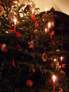 Real Christmas Tree Candles