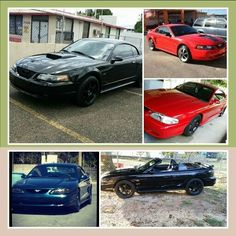 The Mustang Were Mine Andres Arias
