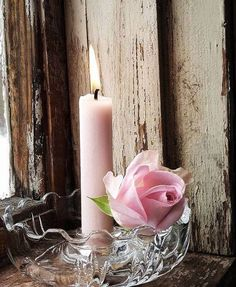 Try These Easy Decorating Tips When Working with Candles Beautiful Candles, Beautiful Roses, Cute Wallpaper Backgrounds, Cute Wallpapers, Candle Lanterns, Pillar Candles, Book Flowers, Jolie Photo, Rose Cottage