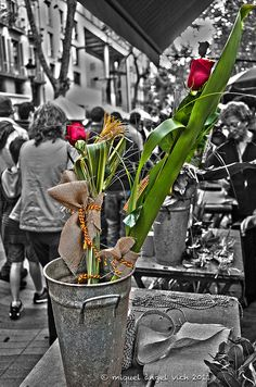 Sant Jordi a les Rambles, Barcelona: LLibres i roses Catalonia Madrid, Barcelona, Europe, Country, Flowers, Pictures, Countries, Roses, Fle