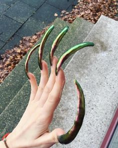 Long Fingernails, Long Nails, Curved Nails, Sexy Nails, Plants, Nail Ideas, Heels, Plant, Planets