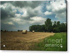 On The Field Before Rain Acrylic Print by Michelle Meenawong