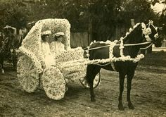 Floral Horse Carriage