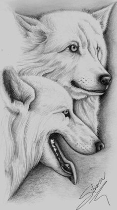 Resultado de imagen para lobos aullando dibujos a lapiz  Arte y