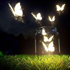 Las mariposas hacen momentos unicos y emotivos durantes el momento mas esperado por ti y tus invitando dando un espectaculo Verde liberando y enviando buenos deseos para todos ustedes.