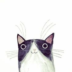 This is my first ever cat Taco. He was a rescue cat from Spain and lived with us for 4 years when we lived in Brighton. He was super friendly to everyone and knew no fear. Watercolor Cat, Watercolor Animals, Animal Sketches, Animal Drawings, Drawing Animals, Gatos Cat, Cat Character, Character Design, Art Plastique