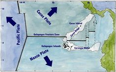 Triple Junction Plate Tectonics | Triple Junction, Plate Tectonics, Cocos, Nazca, Pacific, Galapagos ...