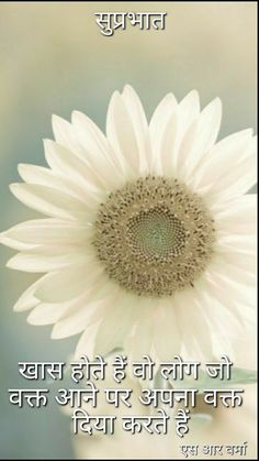Flowers White Garden Ana Rosa 35 Ideas For 2019 Welcome Pictures, Welcome Images, Paper Sunflowers, Nursery Wall Stickers, Wall Decals, Wall Art, Pastel Flowers, Trendy Wallpaper, Flower Wallpaper
