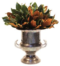 Weston Farms specializes in luxurious, hand-crafted arrangements of exclusive Southern Magnolia. Magnolia Bouquet, Magnolia Wreath, Magnolia Leaves, Champagne Cooler, Fall Flower Arrangements, Christmas Decorations, Holiday Decor, Christmas Tables, Christmas Time