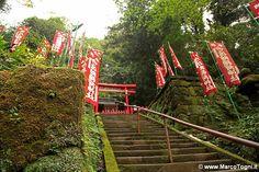 Sasuke inari, Kamakura