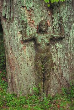 Ana Mendieta, Tree of Life © The Estate of Ana Mendieta Collection Courtesy Galerie Lelong