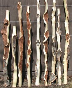 Diamond willow is willow with wood that is deformed into… Wooden Walking Sticks, Walking Sticks And Canes, Walking Canes, Willow Sticks, Willow Furniture, Spirit Sticks, Willow Wood, Wooden Canes, Stick Art