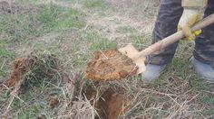토양분석 : 네이버 블로그