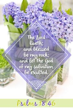 Psalm 18:46 (KJV) The Lord liveth; and blessed be my rock; and let the God of my salvation be exalted.