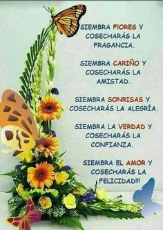 Good Day Quotes, Love Me Quotes, Some Quotes, Spanish Inspirational Quotes, Spanish Quotes, Afternoon Quotes, Morning Quotes, Good Morning In Spanish, Magic Quotes