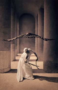 The photographic artworks of Gregory Colbert explore the poetic sensibilities of animals in their natural habitat as they interact with human beings. No longer shown as merely a member of the family of man, humans are seen as a member of the family of animals. None of the images have been digitally collaged.              The images are stunning. http://www.ashesandsnow.org/en/home.php