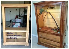 Armoire turned into reptile vivarium! Our little dinosaur is very happy in his new home!