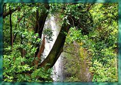 Lulumahu Falls near the Pali