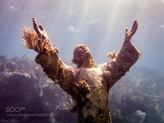 Christ of the Abyss by irahudson #nature #photooftheday #amazing #picoftheday #sea #underwater