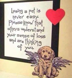 Dog Passed Away Condolences Dog Sympathy Card for Dog Death and Loss Of Pet for Dogs Pets Pet Loss Grief, Loss Of Dog, Pet Quotes Cat, Animal Quotes, Sending Condolences, Pet Names For Boyfriend, Pet Sympathy Cards, Greeting Cards, Card Sentiments