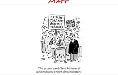 Matt cartoons - Google Search