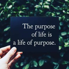 """Live Your Best Life on Instagram: """"Ask yourself about your life purpose daily until you get your answer. #lifeofpurpose #lovelife #livelife #dailyaffirmations #positivequotes"""" Love Life, Life Is Good, Daily Affirmations, Life Purpose, Live For Yourself, Letter Board, Positive Quotes, I Am Awesome, Lettering"""