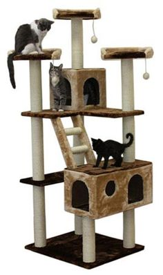 Gorgeous Cat Tree Condo