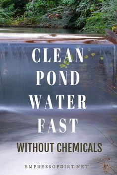 Garden Aesthetic How to clean a pond without draining it or adding any chemicals. See how thousands of pond owners have made their water clear again. Outdoor Ponds, Ponds Backyard, Garden Ponds, Koi Ponds, Outdoor Fountains, Fish Pond Gardens, Water Gardens, Small Gardens, Modern Gardens