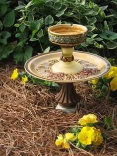Bird Feeder and Bath