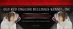 Buldogue Campeiro - Old Bulldogs