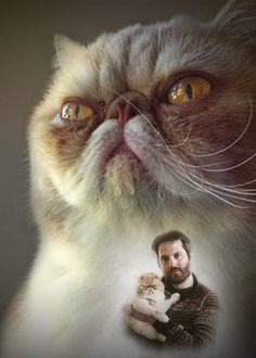 2013 Holiday card project for #tenderlove and #gorbypuff