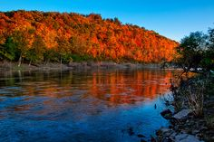 Meramec River in Missouri in Autumn.  I grew up on its banks near Sullivan, Missouri, USA.  It's a beautiful, but dangerous, river with many undertows and whirlpools.