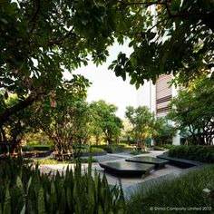 "Project: Life@Ladprao 18 Condominium Garden Designer: Shma Designs Location : Bangkok, Thailand ""We propose an immense green surface to mitigate the harshness of being adjacent to congested Ladprao Road. Fragments of diverse botanic plants are arranged in quilt-like pattern contrasting in form, colour and texture to achieve a complex yet serene beauty. Path and private niches are nestle in these interplaying green envelop providing resident with an instant getaway from the noisy road""."
