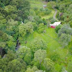 Surrounded by native birds and the babble of Grehan valley stream sits Kokopu cottage , this little slice of paradise could be yours , Valley Stream, Homesteading, Nativity, Paradise, Cottage, Birds, River, Outdoor, Outdoors