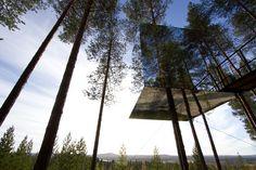 ツリーホテル(Treehotel)