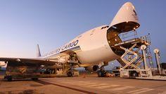 Air cargo cartel settles Australian lawsuit - http://www.therakyatpost.com/business/2014/06/06/air-cargo-cartel-settles-australian-lawsuit/