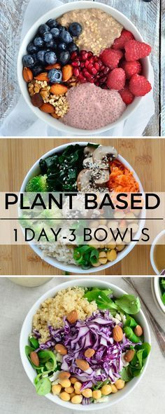 Plant based recipes, vegan recipes, healthy gluten free vegan meal ideas!