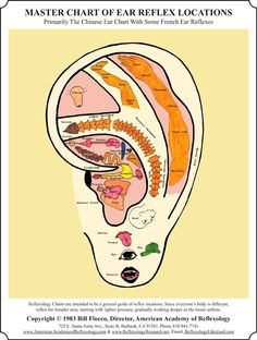 Ear Reflexology Workshop #Ear Reflexology chart # Ear Reflexology map #Reflexology Certificate Course http://www.americanacademyofreflexology.com