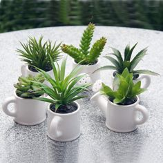 Free shipping white ceramic plant pots dining table home decoration flower cactus watering can ceramic