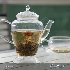 Watch your #tea blossom @ The Tea Republic.